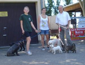 Der Bundestagsabgeordnete geht mit Schützlingen des Tierheims Gassi