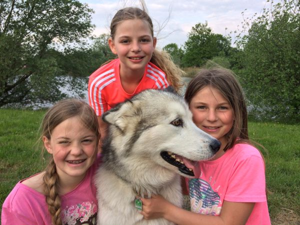 Drei Freundinnen für Tiere