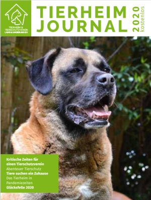 Tierheimjournal 2020 (zum Download auf den Link klicken!)